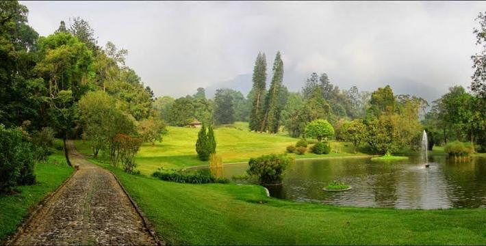 Kebun Raya Terbesar di Indonesia Bakal Ada di Kotawaringin Timur
